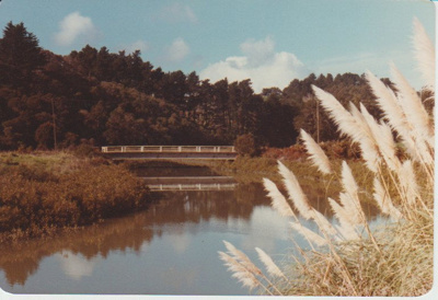 Bridge over a creek/river at Whitford; Fairfield, Geoff; 13/03/2000; 2017.346.61