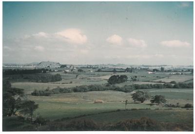 Bradbury's farm; 1950; 2016.248.24