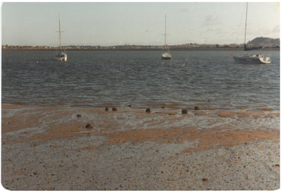 Bucklands Beach Wharf piles; Fairfield, Geoff; 1982; 2017.006.63