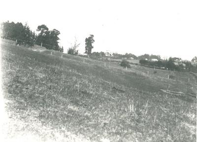 Howick from Stockade Hill; 1904-1906; 2016.112.0016c