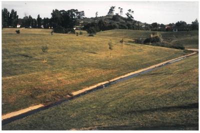 Pakuranga creek near Highland Park; La Roche, Alan; 1988; 2016.485.84