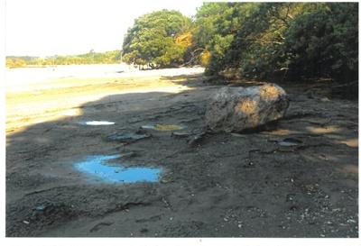Anchor stone in the Turanga River; La Roche, Alan; 1/12/2010; 2017.078.18