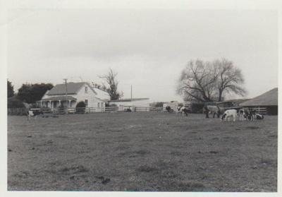 Willowbank Cottage, East Tamaki; 1980; 2018.167.86