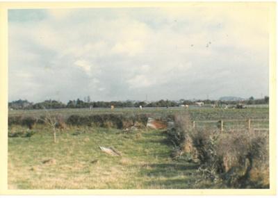 Strawberries at Hawthorndene; Hattaway, Robert; Dec.1983; 2016.301.98