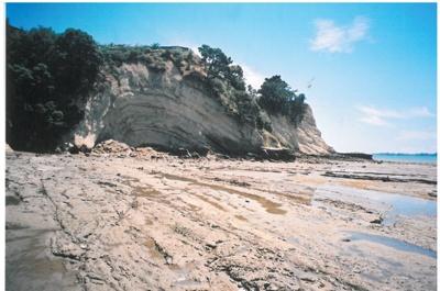 Eastern Beach cliffs; La Roche, Alan; 2010; 2017.052.15