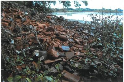 Piles of bricks at the Portland brickworks site; La Roche, Alan; 1/04/2011; 2017.090.33