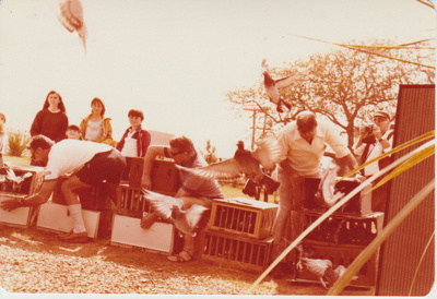 Doves being released at the opening of the Howick Historical Village.; 8/03/1980; 2019.100.66