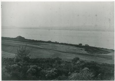 Above Cockle Bay c.1900; Winkleman, Henry; c1927; 2017.195.03