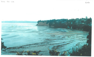 Howick Beach at low tide; c1990; 2016.551.62