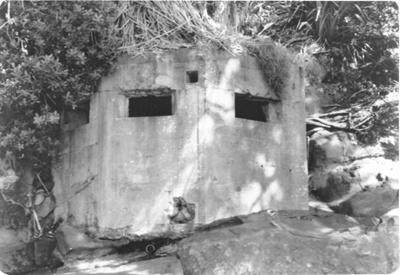 Howick Beach Gun Emplacement; Alan La Roche; March 1991; 5031