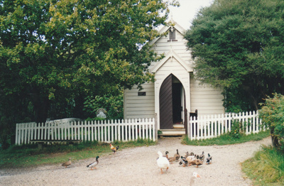 A rooster and ducks in front of the Howick Methodist Church. ; 1990s; P2020.34.08
