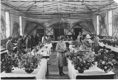 View of Howick Horticultural Society Summer Show a...