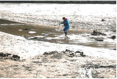 Stepping stones over the Manemangeroa Creek; La Roche, Alan; 1/08/2011; 2017.093.45