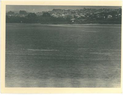 Tamaki River; Marsh, Ron; 24/06/1949; 2016.458.55