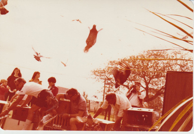 Doves being released at the opening of the Howick Historical Village.; 8/03/1980; 2019.100.65