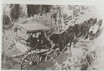 Horse drawn carriage stuck in the mud.; 2017.426.05