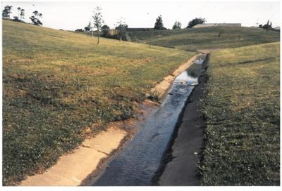 Pakuranga Creek in heavy rain.; La Roche, Alan; 1988; 2016.484.84