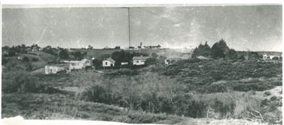 Nixon Park; Breckon, A.N., Northcote; c1940; 2016.114.0017c