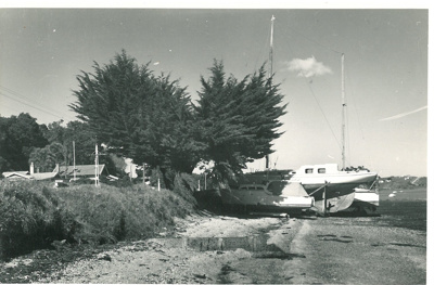 Granger Point, Bucklands Beach White family picnic at Bucklands Beach; Fairfield, Geoff; c1960; 2016.624.28