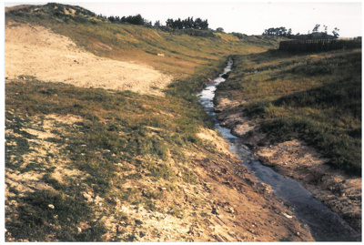 Pakuranga Creek; La Roche, Alan; 1/05/1988; 2016.474.71