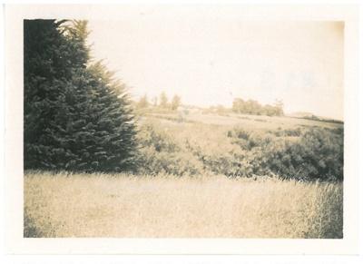 Haughill Farm, Howick; Hattaway, Robert; c1950; 2016.273.54