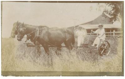 Haymaking at Hawthorn Farm; c1930; 2016.275.57