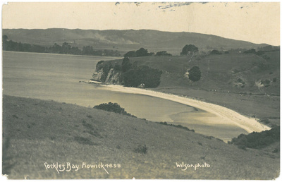 Cockle Bay aerial; Wilson, W T; c1910; 2017.194.02