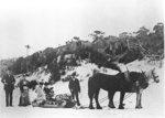 Horse Drawn Sled; C. 1900; 9110
