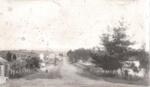 Picton St, Howick. C 1910.; C 1890; 1003