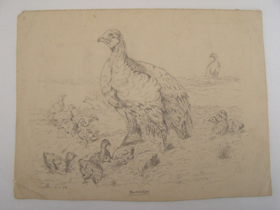 'Partridge'; Col. A. Morrow; 9th June 1892; 1997.138