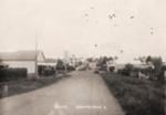 Picton Street, C 1920.; C 1920; 11072