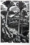 Nikau Palms; Lady Mabel ANNESLEY; 629
