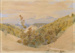 Mount Arthur from Pigeon Valley; John GULLY; 204