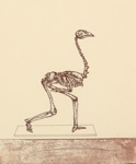 Specimen copy- the featherless biped; Barry CLEAVIN; 1993; 1323