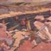 Sardine Fleet - Brittany, Haszard Rhona, 1926, 224