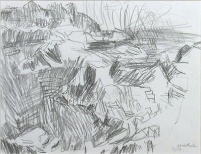 Wellington View from Mt Tinakori; Toss WOOLLASTON; 1972; 504