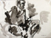 Erua; Toss WOOLLASTON; 1961; 474