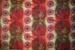 Curtain; 2004/0302