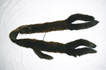 Fur stole; 2004/0208
