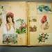 Scrap book; 2004/0086