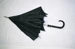 Umbrella; 2004/0012