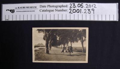 Postcard WW1; B. Livadas & Coutsicos; 1917; 2001_239