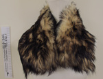 Fur collars; Unknown; Unknown; 1983_202_1-2