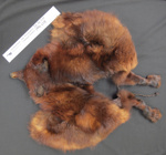 Fox fur stole; Unknown; c.1960; 1990_608