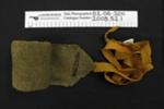 Puttee leg band, Boer War, WW1; Lufton's; c.1899-1918; 2008_52_1
