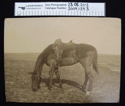 Photograph; 1912-1918; 2009_129_3