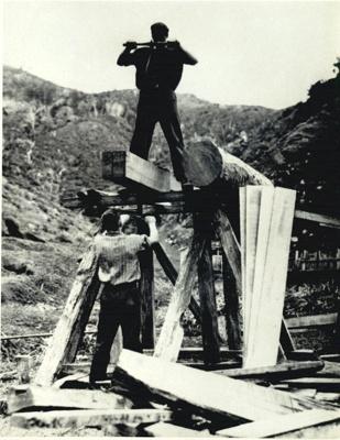 Pit sawing., HM11