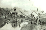 Gibbons mill at Huia, HM12