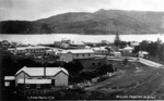 Raglan from the Top of Bow Street, Gilmour Brothers    Raglan NZ, 1910, X001.33.14