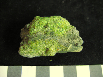 Olivine ; 2007.2.1